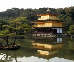 Japon Bahçesi Modelleri